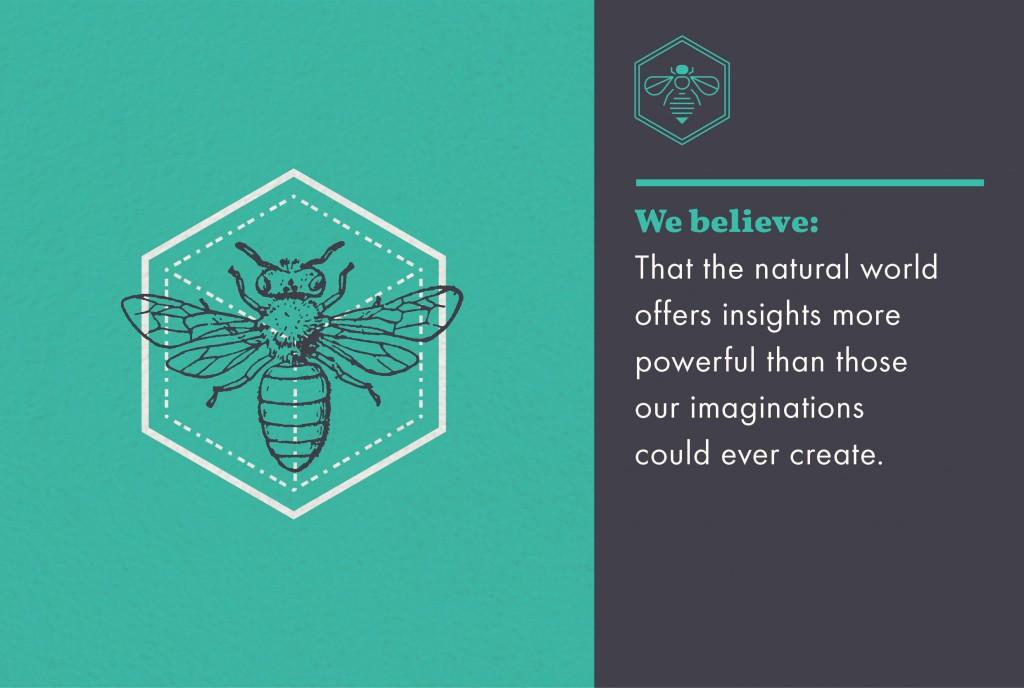 Honeybee Belief - imagination