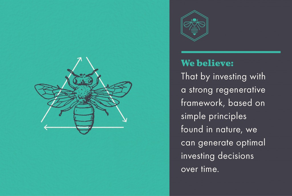 Honeybee Belief - nature