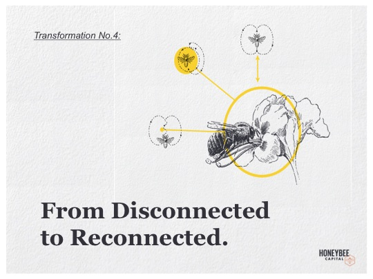4-Disconnected to Reconnected