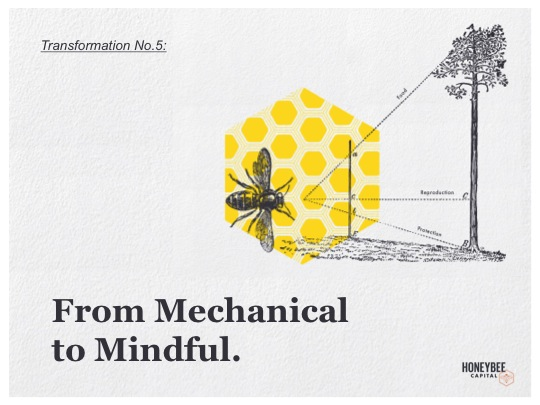 5-Mechanical to Mindful