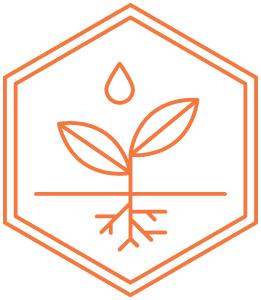 Honeybee_Icons_Investing_Outl_Orange