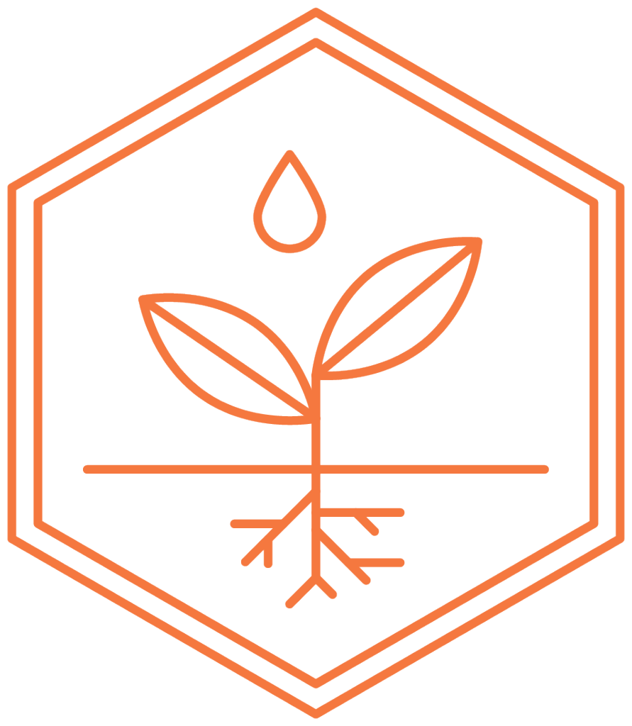 Honeybee_Icons_Investing_Outl_Orange